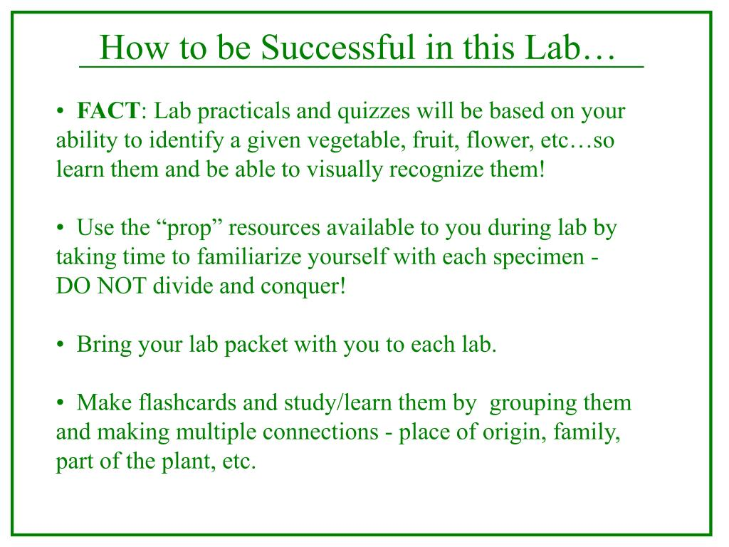 How to be Successful in this Lab…