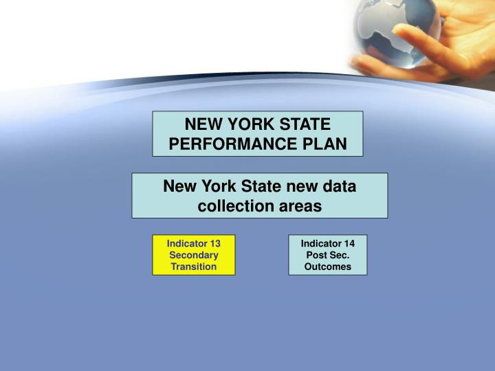NEW YORK STATE PERFORMANCE PLAN