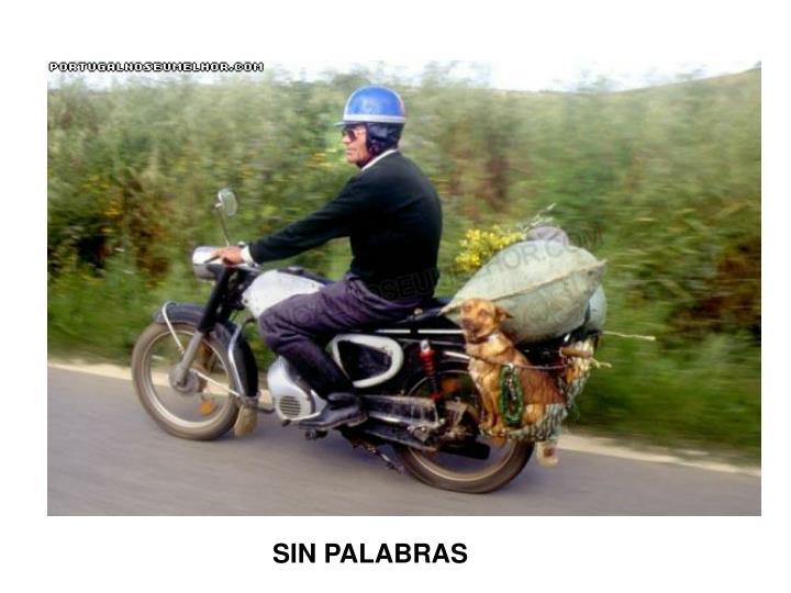 SIN PALABRAS