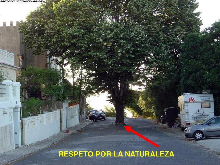 RESPETO POR LA NATURALEZA