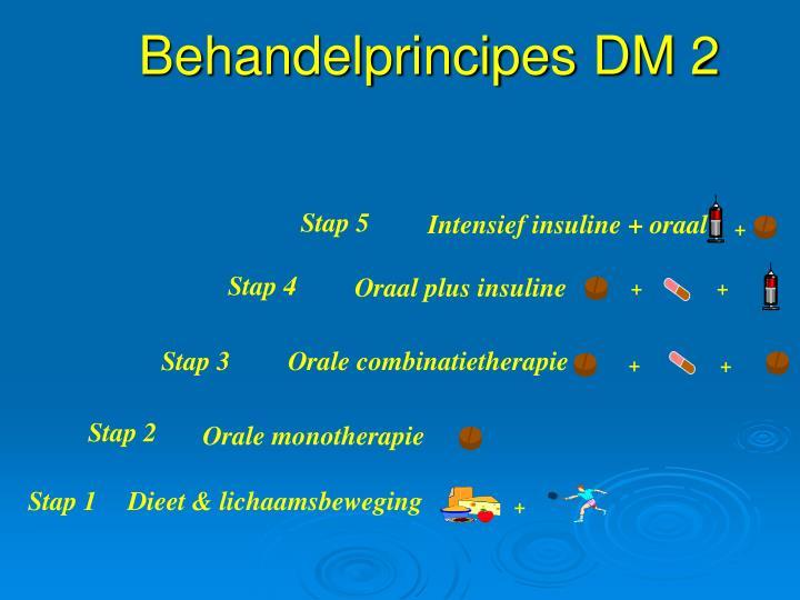 Behandelprincipes DM 2