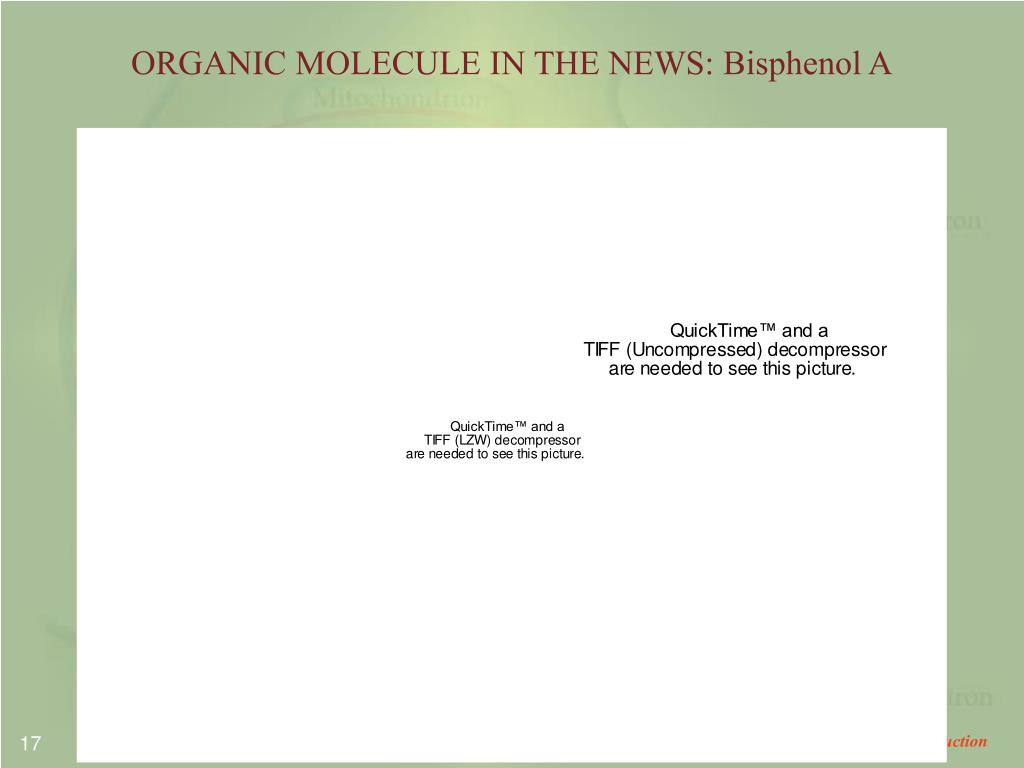 ORGANIC MOLECULE IN THE NEWS: Bisphenol A
