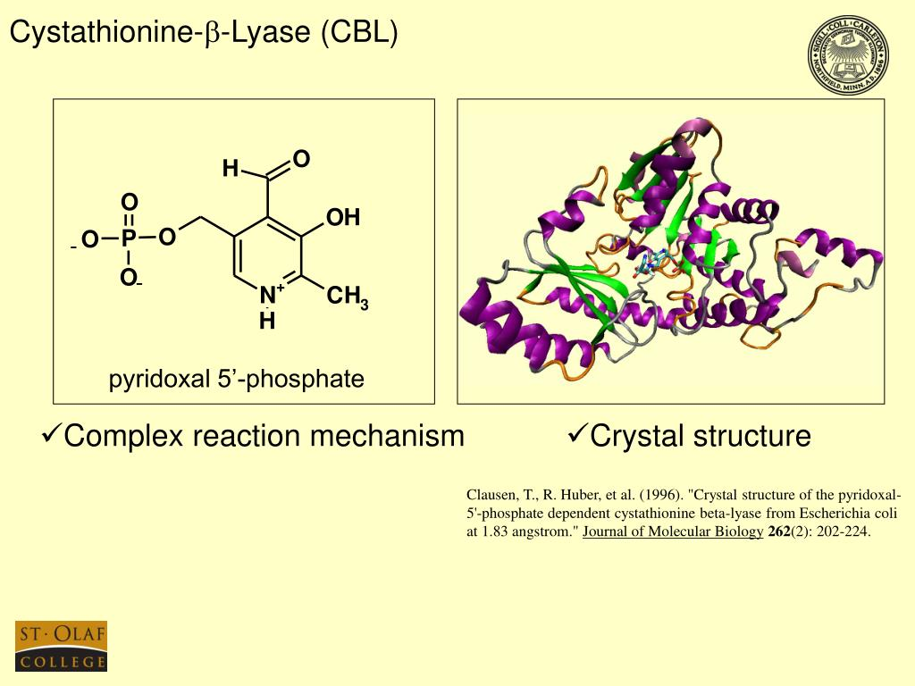 Cystathionine-