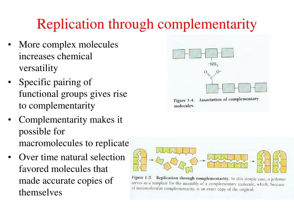 Replication through complementarity