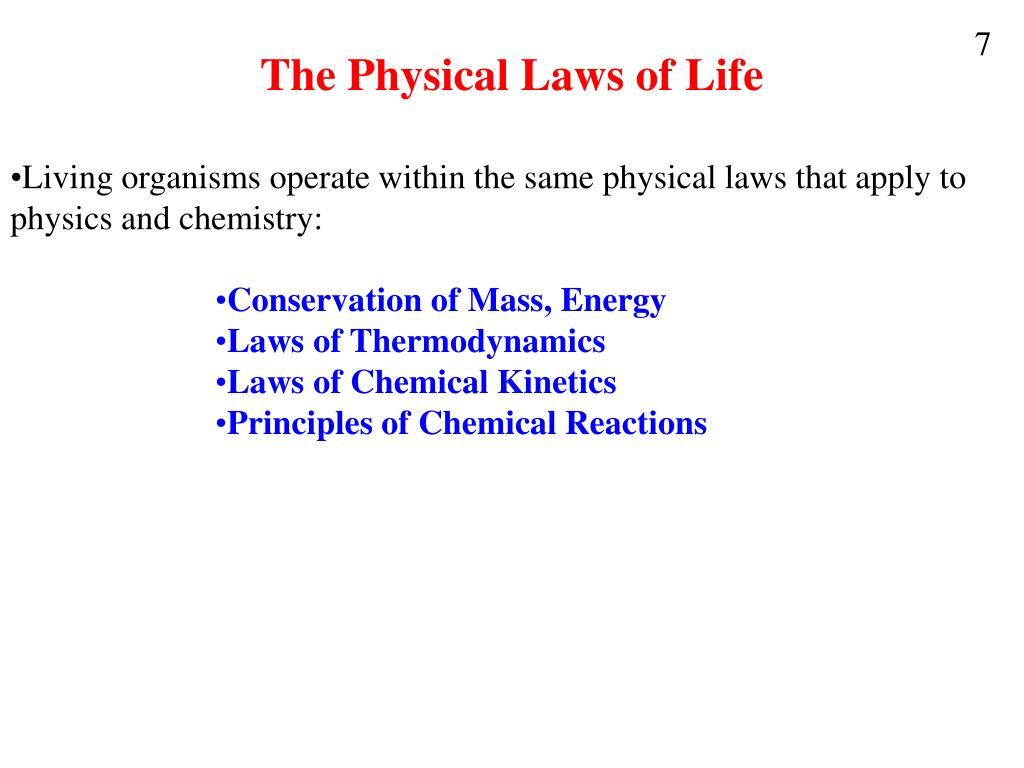 The Physical Laws of Life