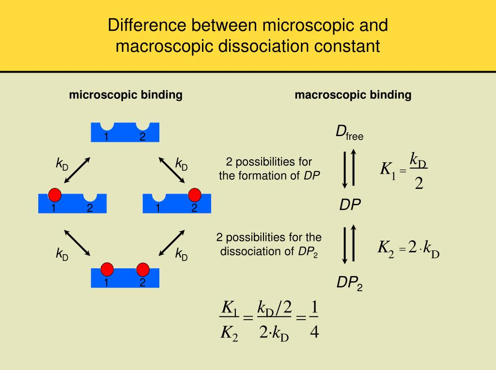 Difference between microscopic and