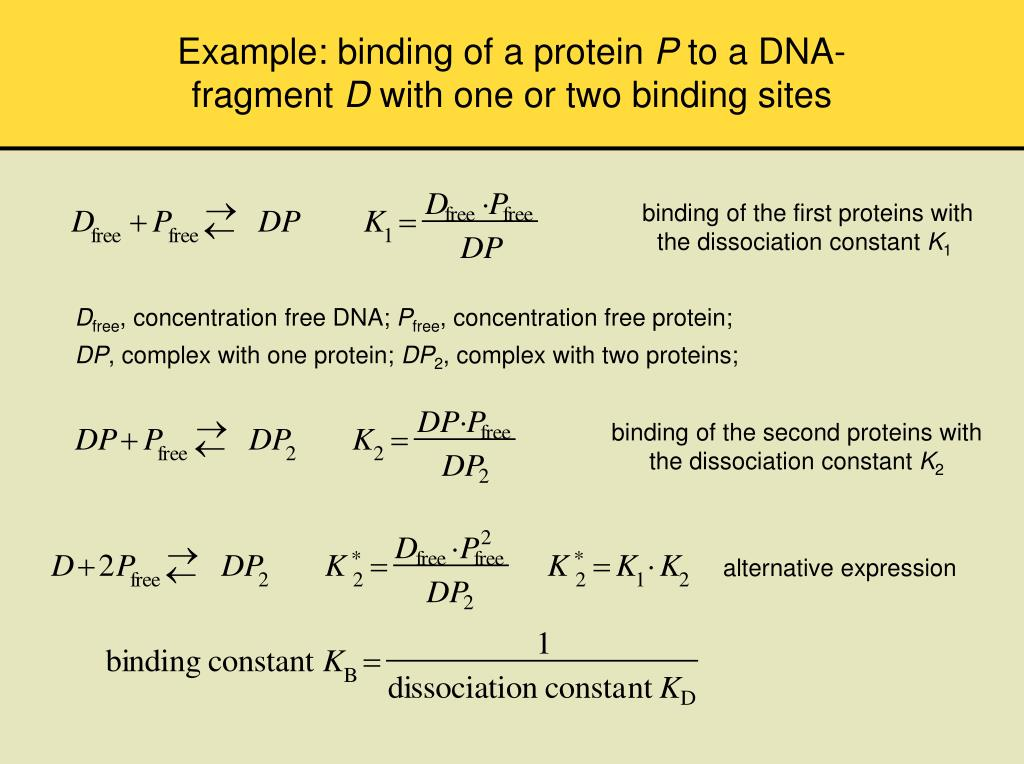 Example: binding of a protein