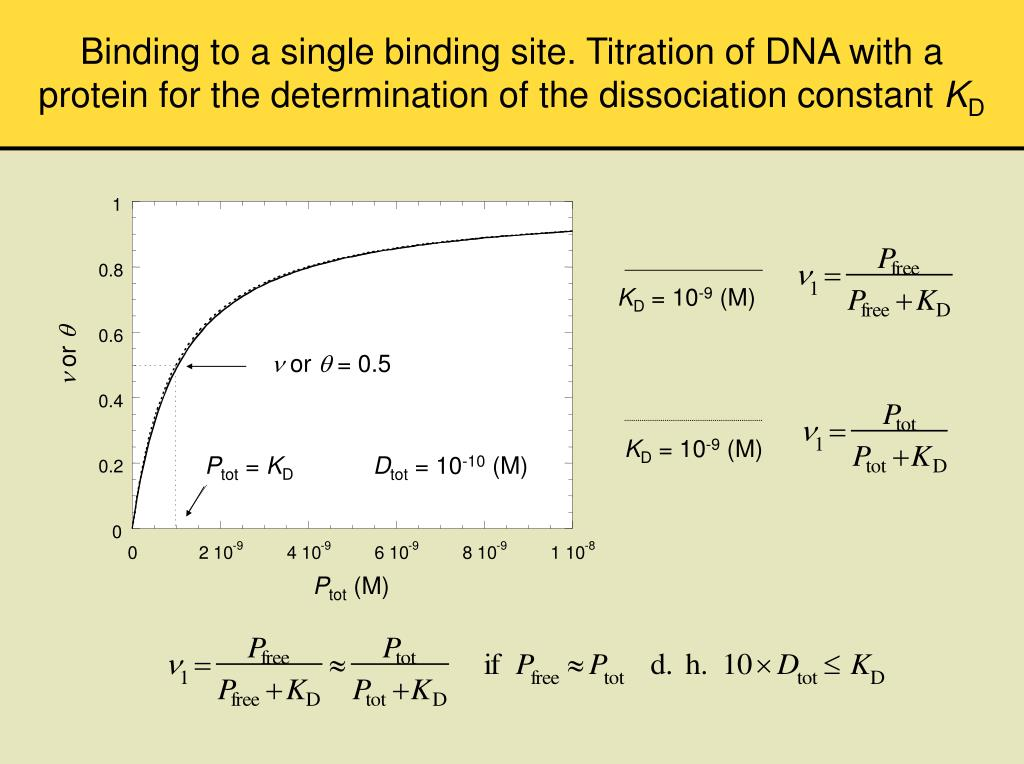 Binding to a single binding site. Titration of DNA with a