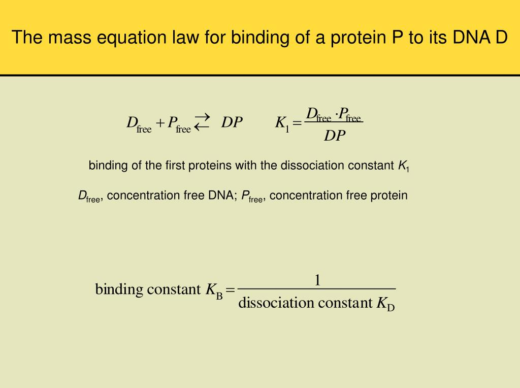 The mass equation law for binding of a protein P to its DNA D