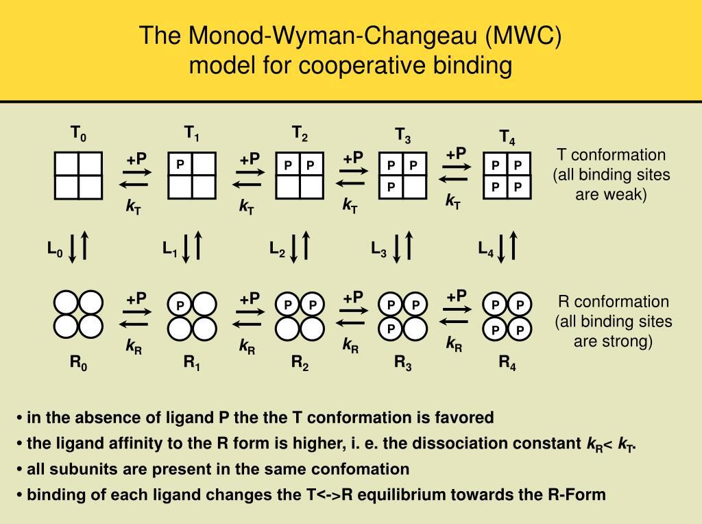 The Monod-Wyman-Changeau (MWC)