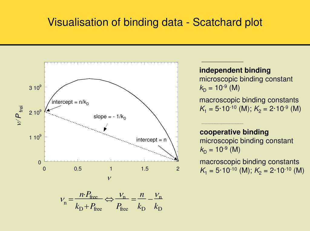 Visualisation of binding data - Scatchard plot
