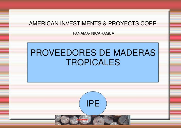 AMERICAN INVESTIMENTS & PROYECTS COPR