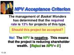 npv acceptance criterion