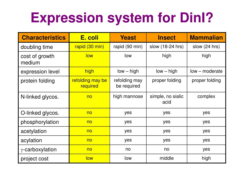 yeast expression system Description deliverables turnaround price - sub-cloning into yeast expression system - transient expression and purification - stable cell line establishment.