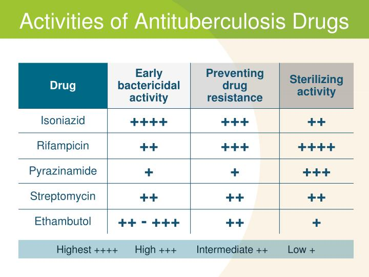 Activities of Antituberculosis Drugs