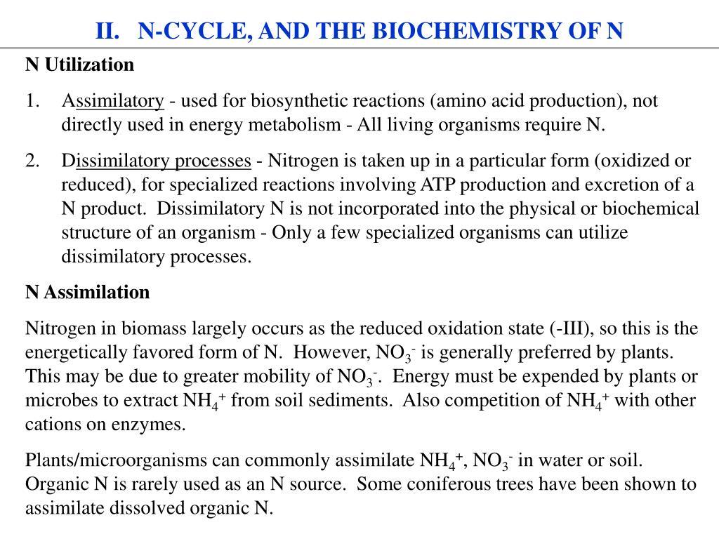 II.   N-CYCLE, AND THE BIOCHEMISTRY OF N