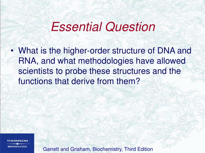 Essential question l.jpg