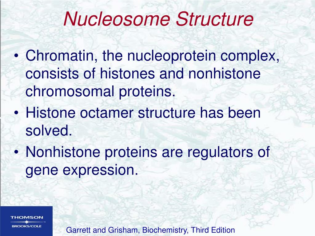 Nucleosome Structure