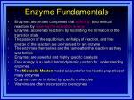 enzyme fundamentals