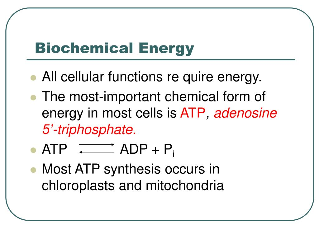 Biochemical Energy