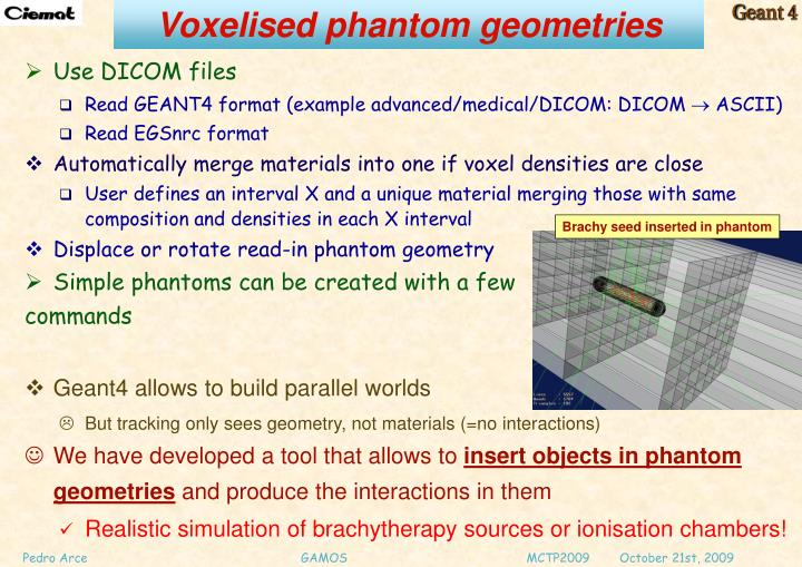 Voxelised phantom geometries