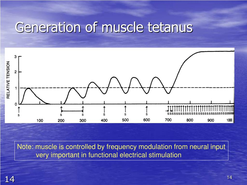 Generation of muscle tetanus