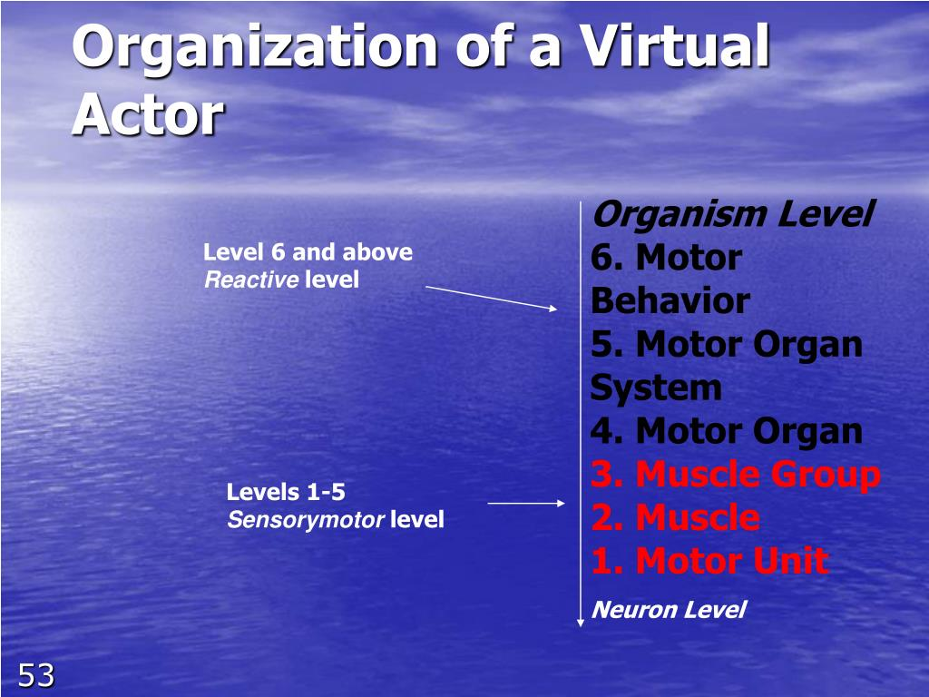 Organization of a Virtual Actor