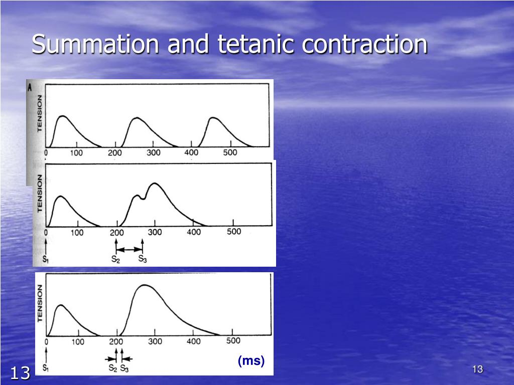 Summation and tetanic contraction