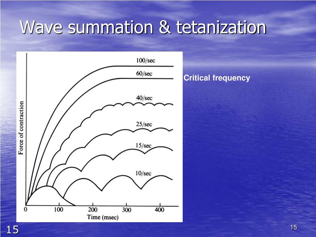 Wave summation & tetanization