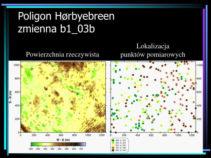 Poligon H