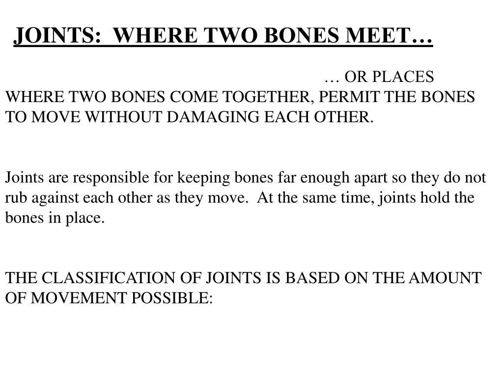 JOINTS:  WHERE TWO BONES MEET…