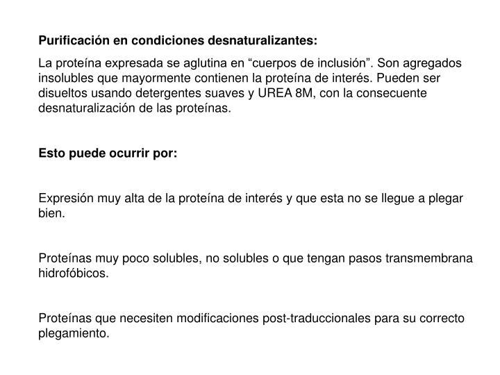 Purificación en condiciones desnaturalizantes: