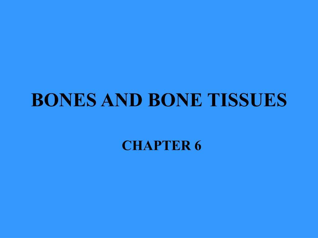 BONES AND BONE TISSUES
