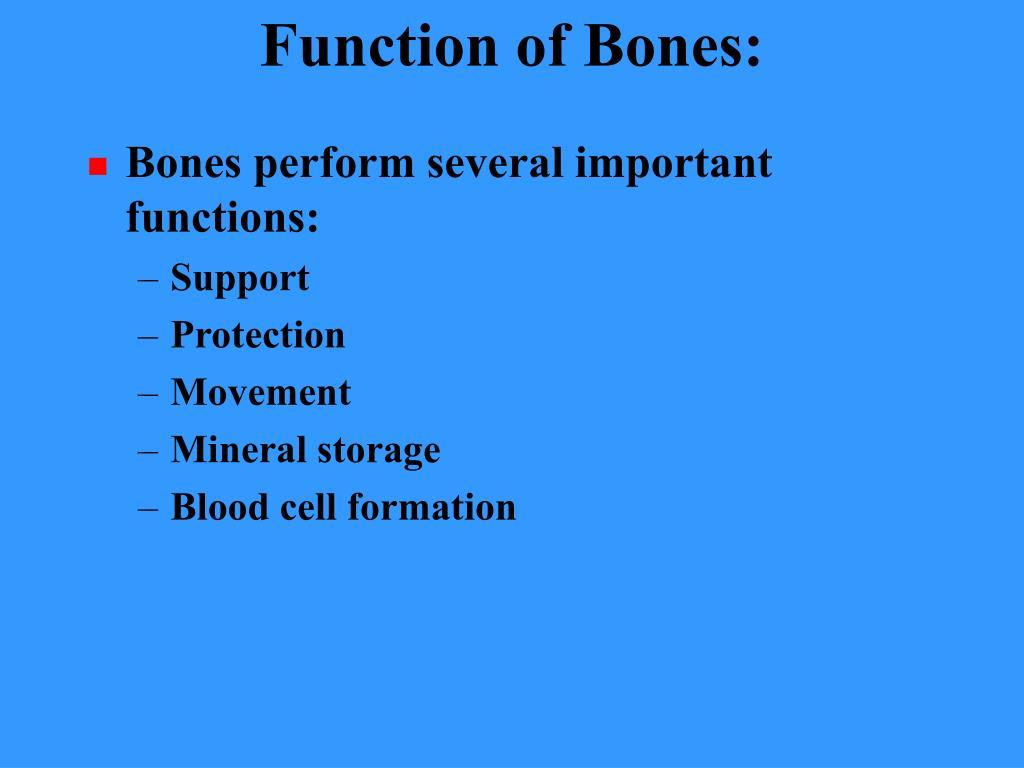 Function of Bones: