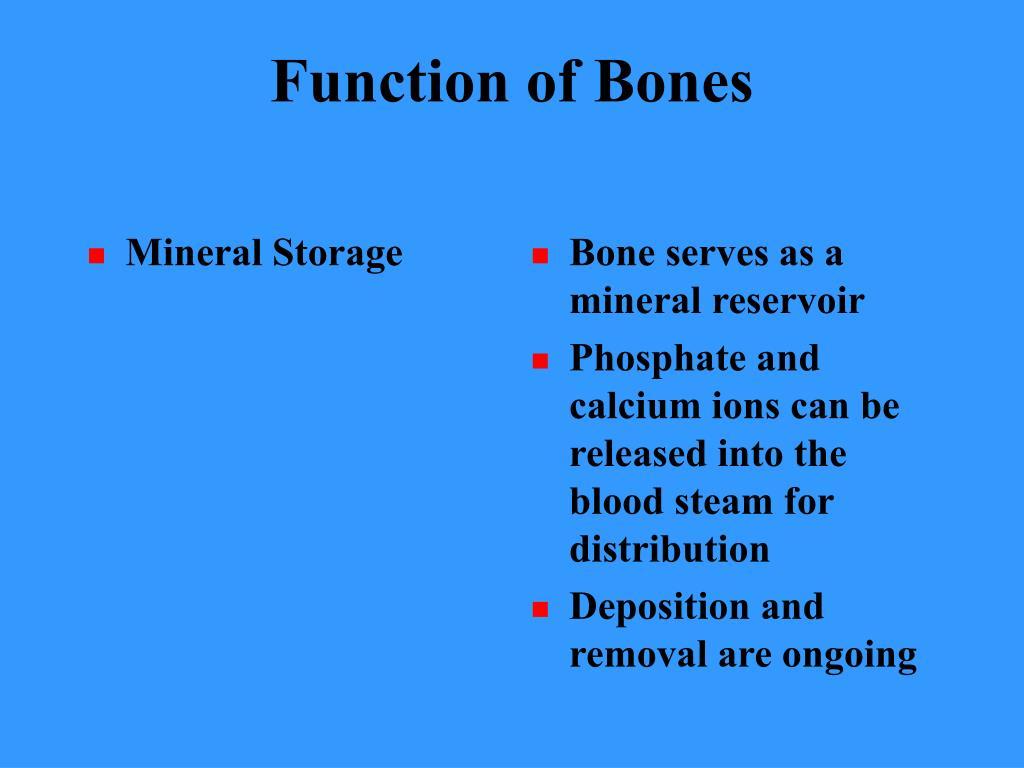 Mineral Storage