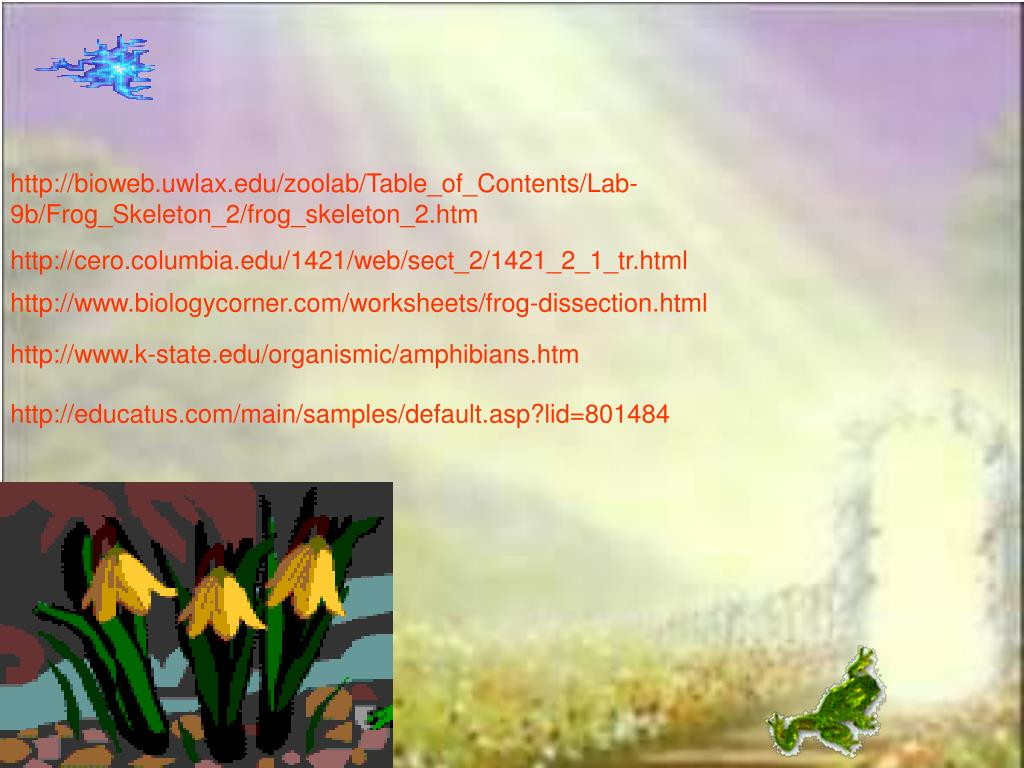 http://bioweb.uwlax.edu/zoolab/Table_of_Contents/Lab-9b/Frog_Skeleton_2/frog_skeleton_2.htm