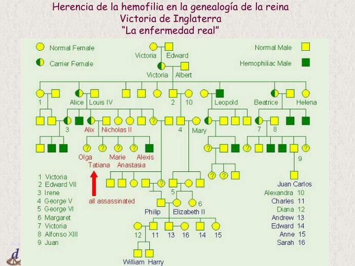 Herencia de la hemofilia en la genealogía de la reina Victoria de Inglaterra