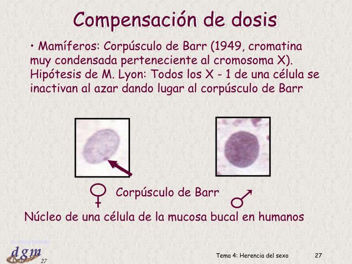 Compensación de dosis