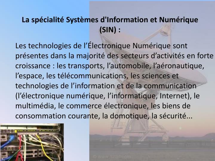 La spécialité Systèmes d'Information et Numérique (SIN) :