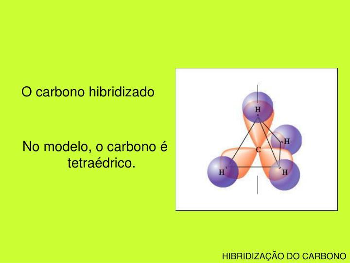 O carbono hibridizado
