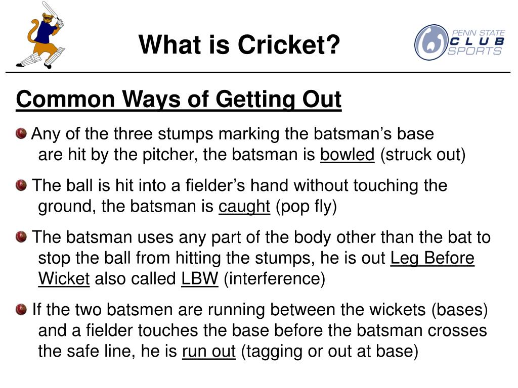 What is Cricket?
