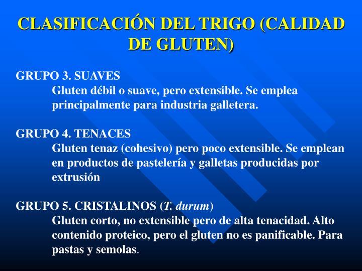 CLASIFICACIÓN DEL TRIGO (CALIDAD DE GLUTEN)