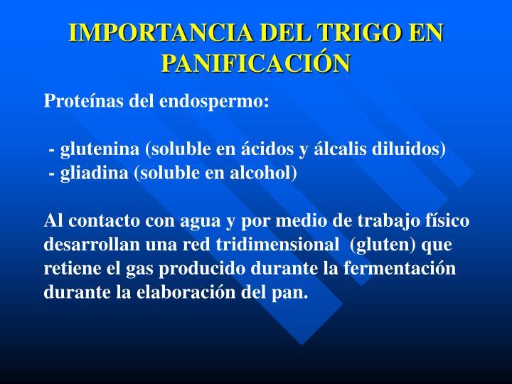 IMPORTANCIA DEL TRIGO EN PANIFICACIÓN