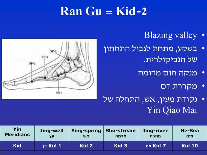 Kid-2
