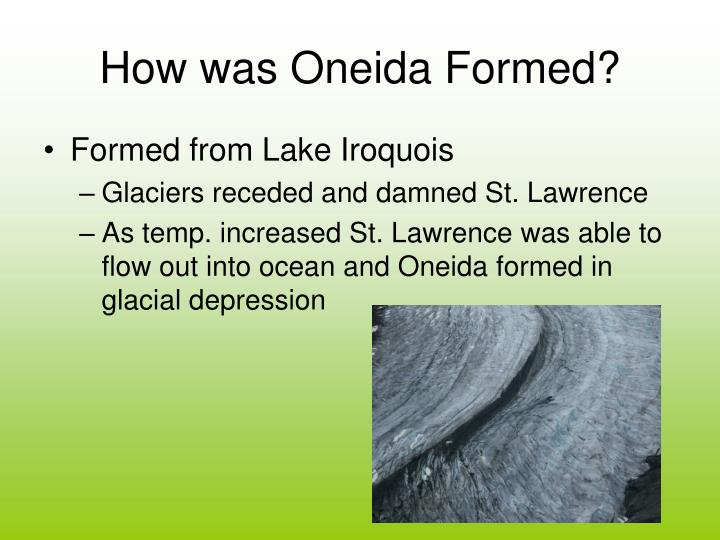 How was oneida formed