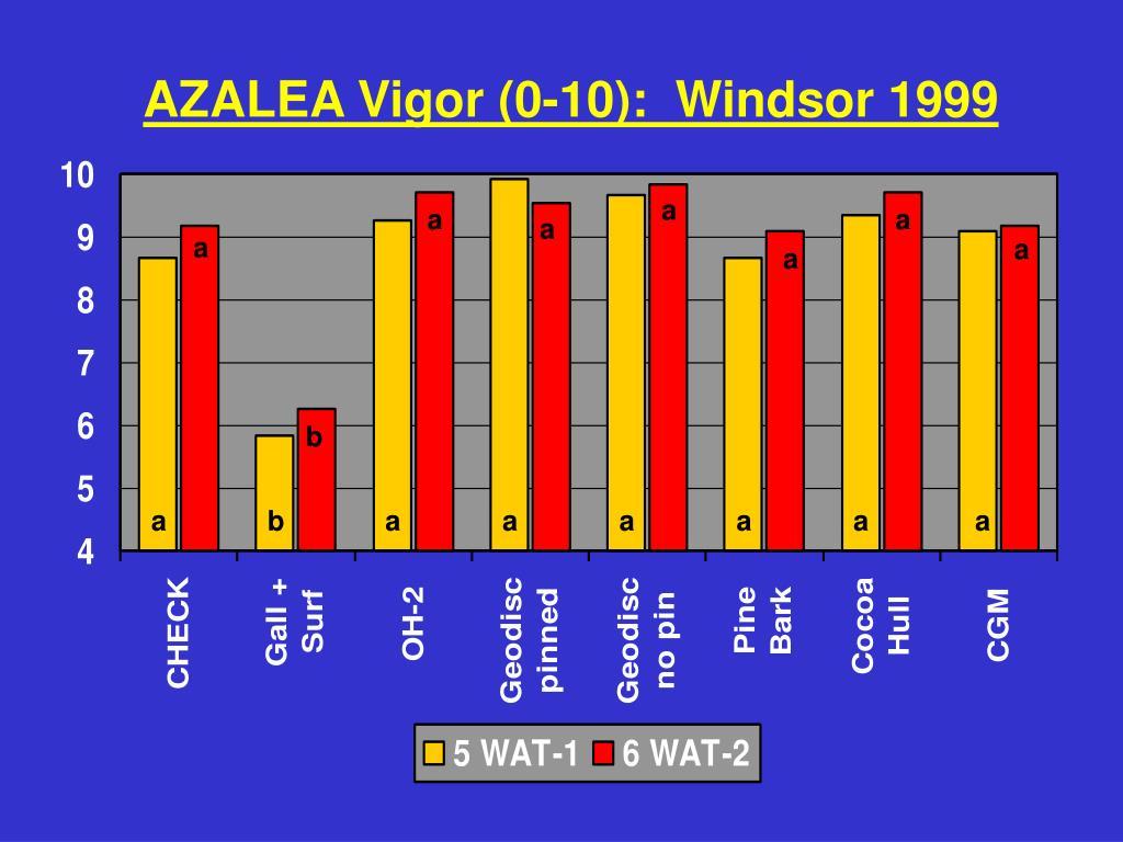 AZALEA Vigor (0-10):  Windsor 1999