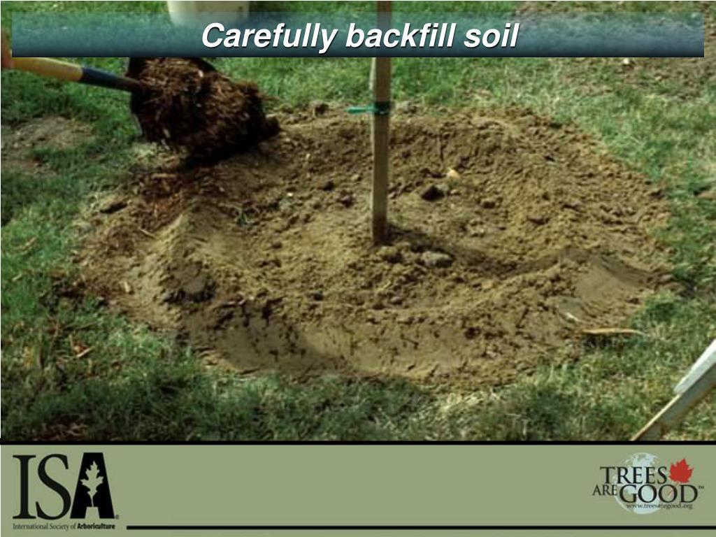 Carefully backfill soil