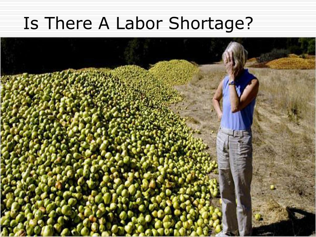 Is There A Labor Shortage?