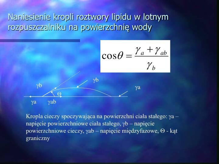 Naniesienie kropli roztwory lipidu w lotnym rozpuszczalniku na powierzchnię wody