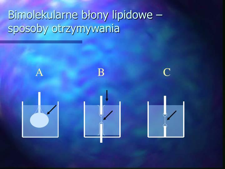 Bimolekularne błony lipidowe – sposoby otrzymywania